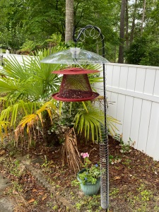 red cardinal bird feeder